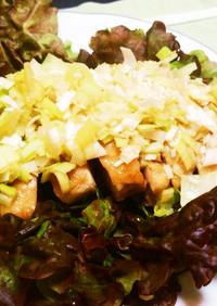 ルクエで蒸し鶏の葱たっぷりソース
