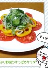 たっぷり野菜のすっぱめサラダ