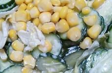 レタスときゅうりで簡単サラダ