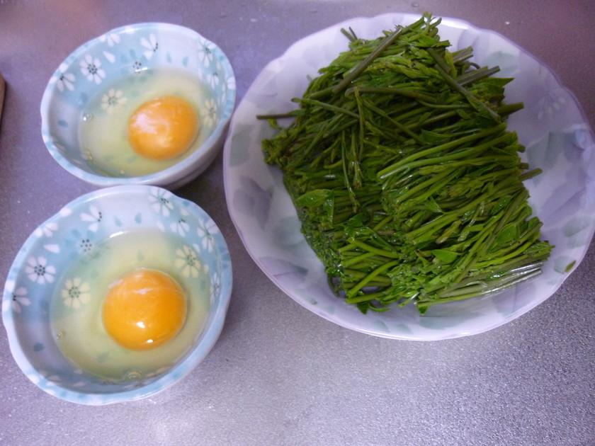 あけびの芽の食べ方