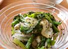 簡単❀白菜とほうれん草の胡麻和え