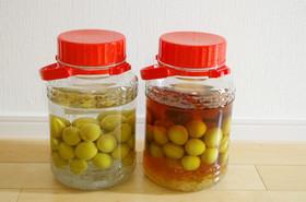 毎年恒例☆定番梅酒と変わり種梅酒