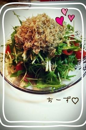 居酒屋風 水菜とカリカリじゃこサラダ♥