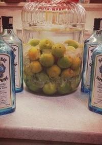 ジンで梅酒