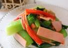 さっぱり♬チンゲン菜の冷た~い中華サラダ