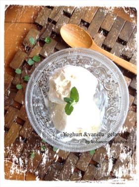 ジェラート風*簡単バニラヨーグルトアイス