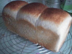 りんご酵母で食パン
