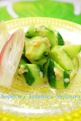 塩麹きゅうり 麺つゆワサビ簡単漬