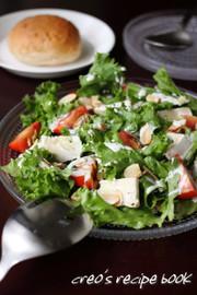 カマンベールとレタスのサラダの写真