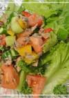 夏野菜と鯖缶の酸っぱいサラダ