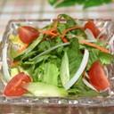 プチトマトのグリーンサラダ