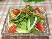 プチトマトのグリーンサラダの写真