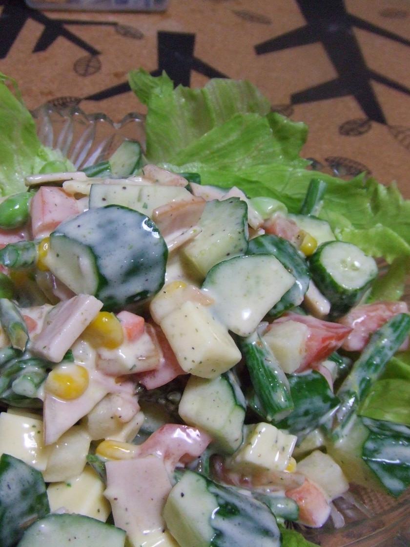 夏野菜&ヨーグルトマヨでお手軽朝食サラダ