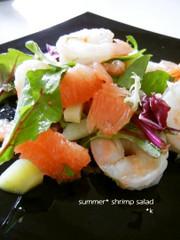 グレープフルーツと海老のサマーサラダの写真