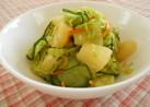 パイン缶☆お野菜たっぷり~さっぱりサラダ