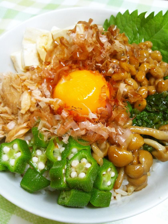疲労回復!豆腐と夏野菜のネバネバ丼