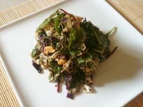 茶葉サラダ(ラペットゥ風)