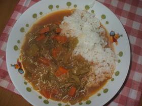 野菜煮込みカレー