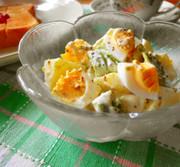 アボガドとじゃが芋と卵のサラダの写真