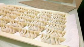 ふわふわおいしい豆腐餃子