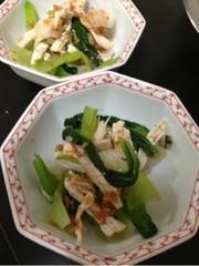 簡単副菜♪ヘルシーな青梗菜と胸肉の梅和えの写真
