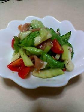 春色サラダ