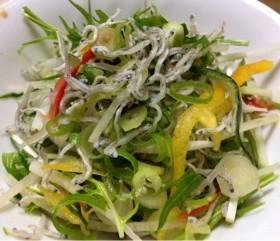 九条ネギと水菜とじゃこのサラダ