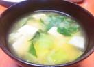 豆腐とちんげん菜の味噌汁