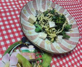 春爛漫☆菜の花サラダ