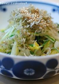 白菜と水菜でカリカリジャコソース和え