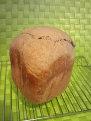 HB☆塩麹&豆乳でもっちり皮パリ食ぱんの写真