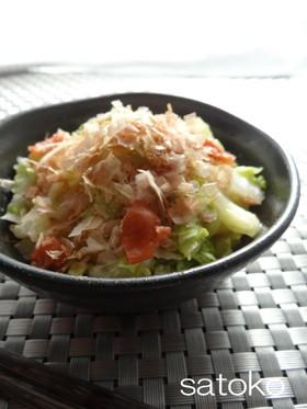 ビニール袋でもみもみ♪簡単白菜梅サラダ☆