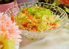 パプリカで簡単な彩りサラダ