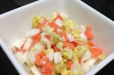 白菜とにんじんのコールスローサラダ*