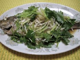 ∽∽白身魚の中華風レンジ蒸し∽∽