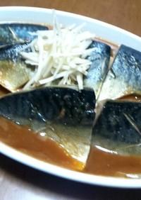 元魚屋が教える!旨い飯友…サバの味噌煮