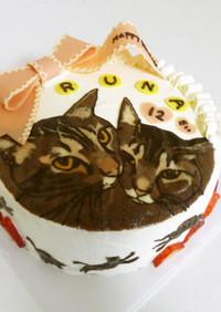 猫好きの為のバースデーケーキデザイン