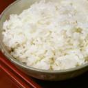 うるち米・米粒麦・もち米のおいしいご飯