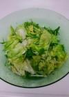 簡単!レタスと水菜の旨サラダ
