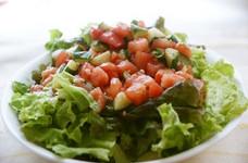 トマトと胡瓜のドレッシングサラダ