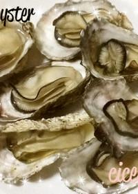 殻付きの蒸し牡蠣 圧力鍋で簡単12