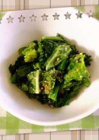 菜の花とレタサイ(白菜)のサラダ