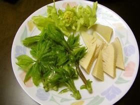 筍と山菜の天ぷら