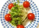 ブロッコリースプラウトとトマトのサラダ