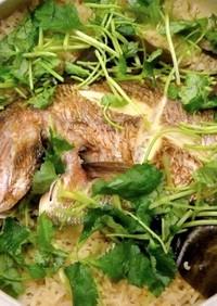 おめで鯛✿土鍋で絶品鯛めし♪簡単です!