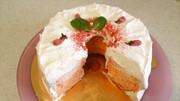 きらり!!ひな祭り・桜のシフォンケーキの写真