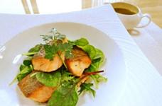 カリふわ鮭のサラダ仕立てマスタード風味♪