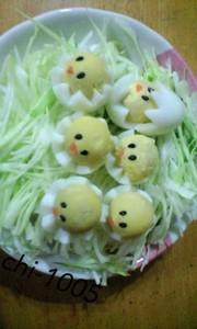 うずらの卵でひよこ♡お弁当にの写真