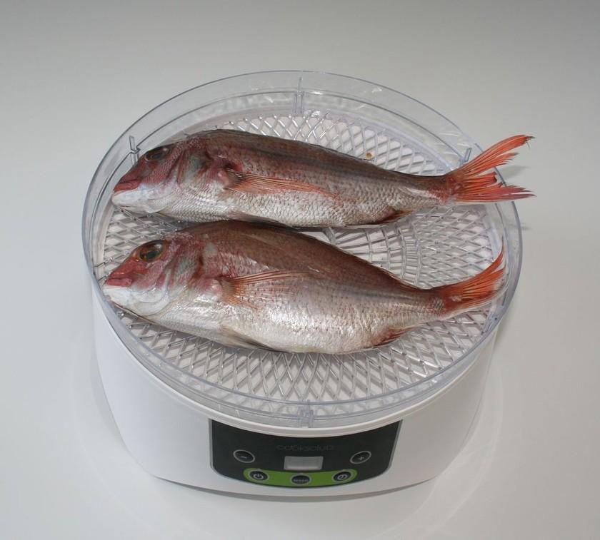 簡単☆すぐできる食品乾燥機で鯛の干物作り