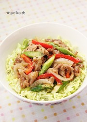 簡単♪豚肉と春野菜のオイスター丼☆の写真